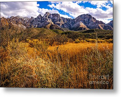 Here To There Metal Print by Mark Myhaver