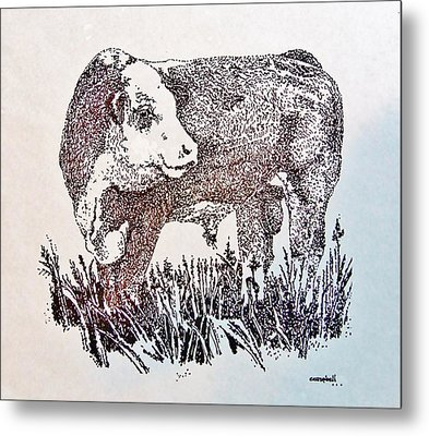Polled Hereford Bull  Metal Print by Larry Campbell