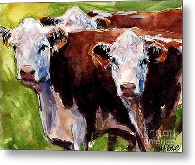 Hereford Ears Metal Print by Molly Poole