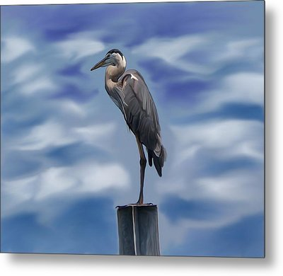 Heron 1 Metal Print by Karen Sheltrown