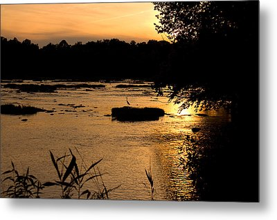 Metal Print featuring the photograph Heron At Sunset by Andy Lawless
