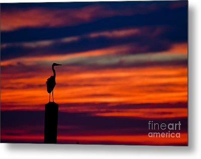 Heron Sunset Silhouette Metal Print