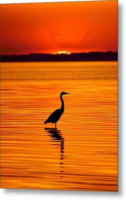 Heron With Burnt Sienna Sunset Metal Print