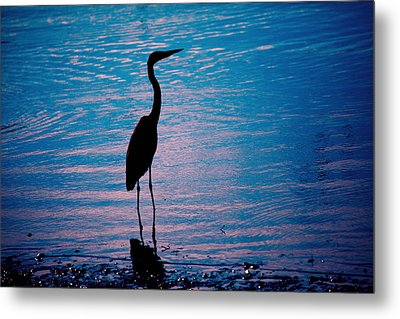 Herons Moment Metal Print