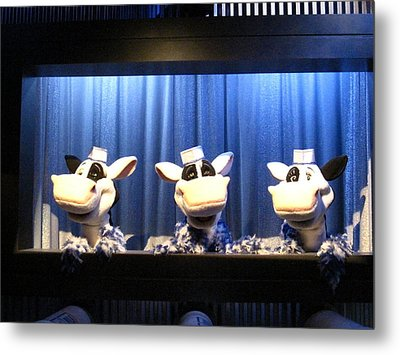 Hershey Park - 121230 Metal Print by DC Photographer