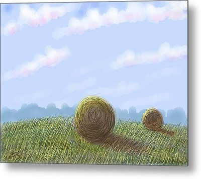 Hey I See Hay Metal Print by Stacy C Bottoms