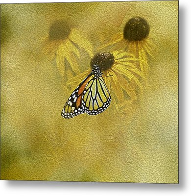 Hey Susan There Is That Butterfly Again Metal Print by Diane Schuster
