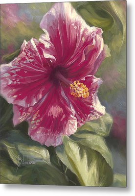Hibiscus In Bloom Metal Print by Lucie Bilodeau