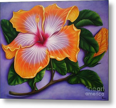 Metal Print featuring the painting Hibiscus by Paula L