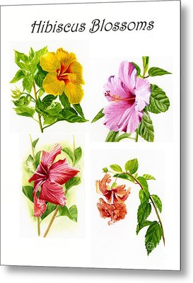 Hibiscus Poster With Script Metal Print by Sharon Freeman