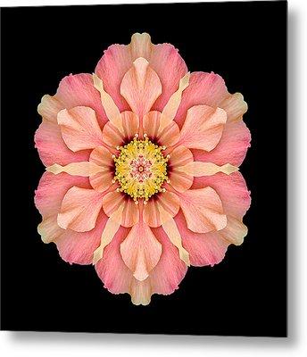 Hibiscus Rosa-sinensis I Flower Mandala Metal Print by David J Bookbinder