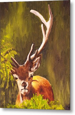 Hidden Deer Metal Print