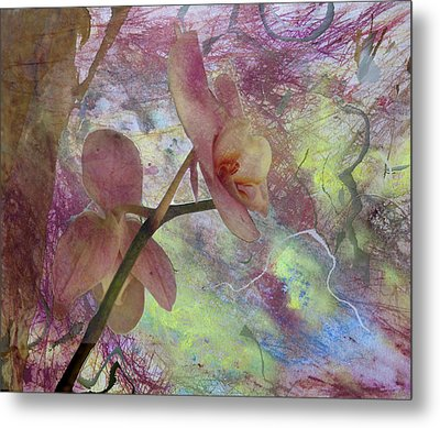 Hidden Orchid Metal Print by Donna Walsh
