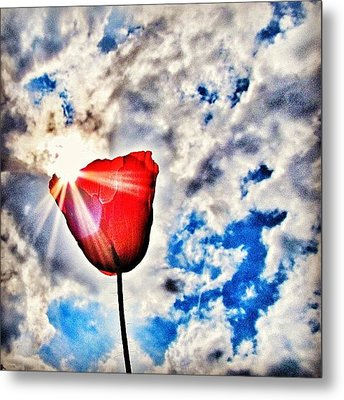 High As A Sky Metal Print