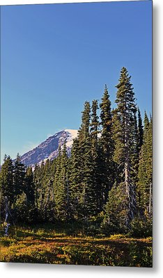 High Country Metal Print by Anthony Baatz
