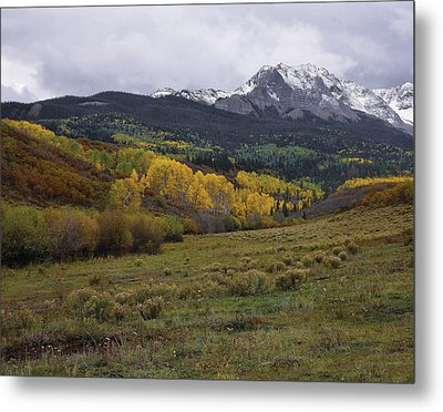 High Country Autumn Metal Print