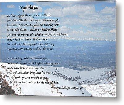 High Flight Metal Print by Paulette B Wright