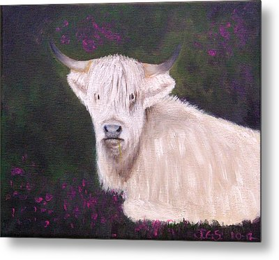 Highland Cow In The Heather Metal Print by Janet Greer Sammons