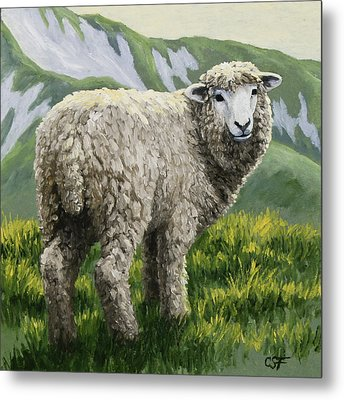 Highland Ewe Metal Print by Crista Forest