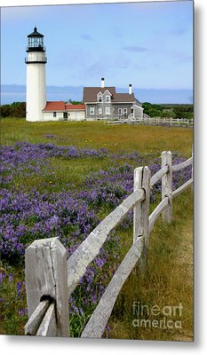 Highland Lighthouse Metal Print