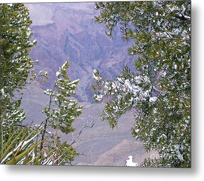 Metal Print featuring the photograph Highlighting Snow by Roberta Byram