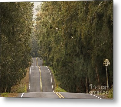 Highway 250 Metal Print by Inge Riis McDonald