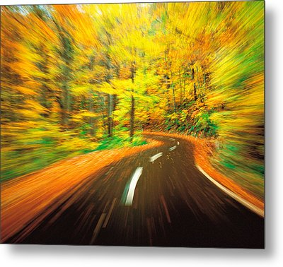 Highway Amidst Forest Metal Print by Panoramic Images