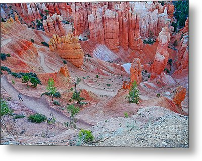 Metal Print featuring the photograph Hiking Bryce by Nick  Boren