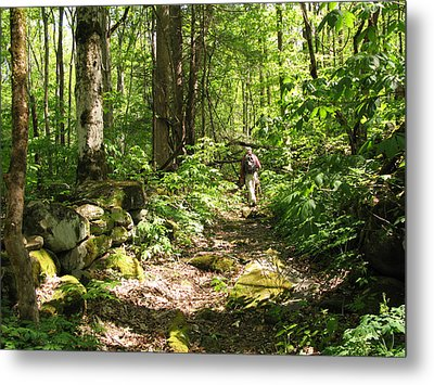 Hiking Off Trail Metal Print by Melinda Fawver