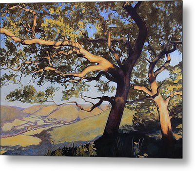 Hill Country Metal Print by Andrew Danielsen