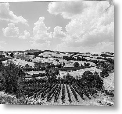 Hills Of Tuscany Metal Print