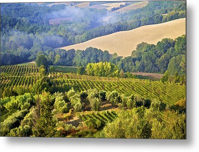 Hills Of Tuscany Metal Print by David Letts