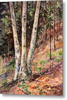 Hillside Birch Metal Print by Kristine Plum