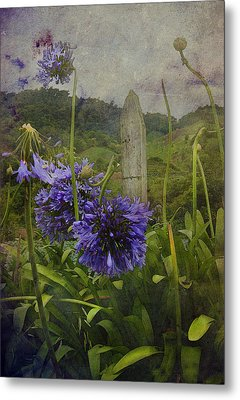 Metal Print featuring the photograph Hillside Flowers by Kandy Hurley