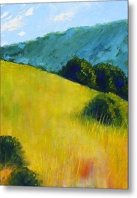 Hillside Prairie Metal Print by Nancy Merkle