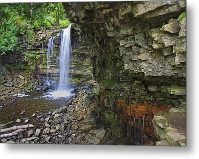 Metal Print featuring the photograph Hilton Falls In Summer by Gary Hall