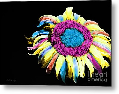 Hippie Sunflower Rainbow Painterly Metal Print by Andee Design