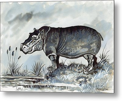 Hippo Metal Print by Anthony Mwangi