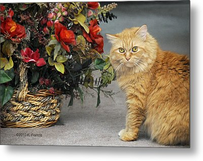 His Majesty Metal Print by Kenny Francis