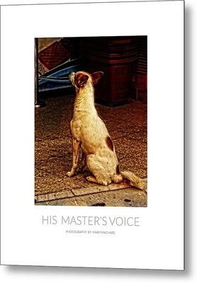 His Master's Voice - Poster Metal Print by Mary Machare