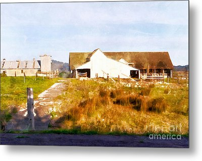Historic D Ranch In Point Reyes California Dsc2399wc Metal Print by Wingsdomain Art and Photography