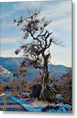 Hitchhiker On Highway 173 Metal Print by Glenn McCarthy Art and Photography