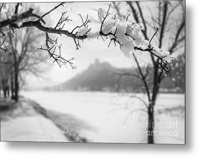 Metal Print featuring the photograph Hoarfrost With Sugarloaf by Kari Yearous