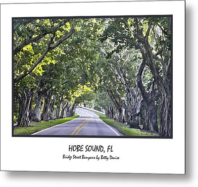 Hobe Sound Fl-bridge Street Banyans Metal Print