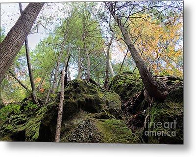Hocking Hills Moss Covered Cliff Metal Print by Karen Adams