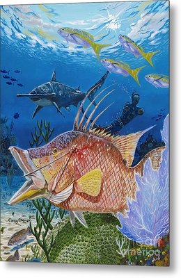 Hog Fish Spear Metal Print by Carey Chen