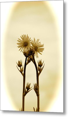 Holding On Metal Print by Andrea Dale
