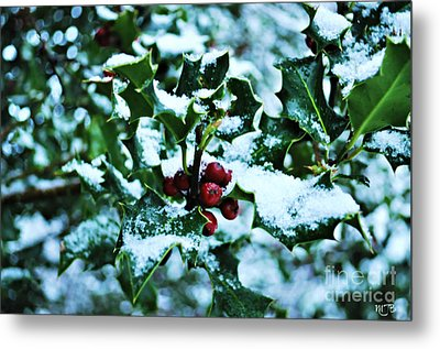Metal Print featuring the photograph Holly And New Snow by Mindy Bench