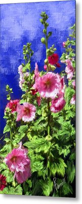 Hollyhock Haven Metal Print by Ric Darrell