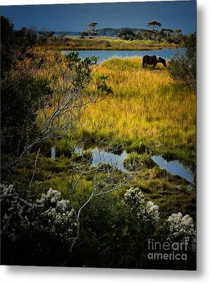 Home On The Range Metal Print by Robert McCubbin